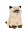 Siameze poezen/katten knuffel 15 cm
