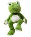 Warme knuffel kruik groene kikker amfibie