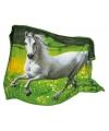 Paarden thema fleecedeken