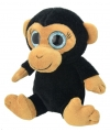 Pluche chimpansee aap knuffel 18 cm
