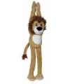 Leeuwen knuffel om op te hangen