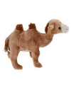 Speelgoed knuffel kameel 22cm