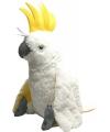 Speelgoed knuffel witte papegaai 76 cm