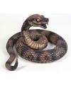 Bruine Halloween cobra slang