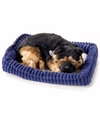 Slapende Herdershond puppy