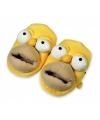Homer Simpsons gezicht sloffen