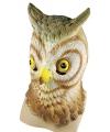 Dieren masker vogel uil